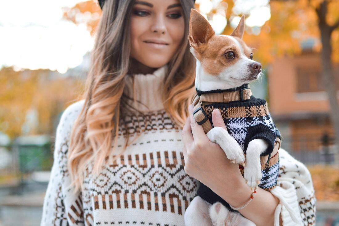 Woman in beige winter sweater holding tiny dog in matching outfit